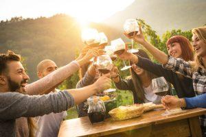 illawarra winery tours